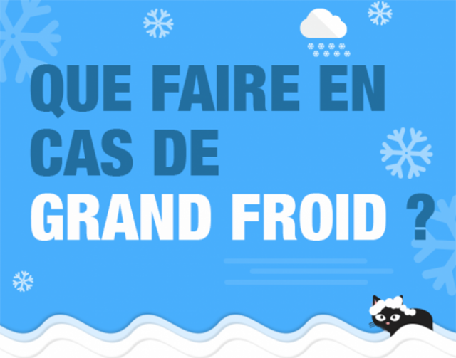 Plan de prévention grand froid