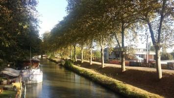 Travaux sur les berges du Canal du Midi